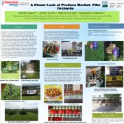 CAPERSdaisha.png