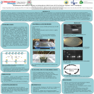 JONESjulian_Summer2015_CASE_0.png